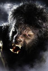 Benicio del Toro spielt den Wolfsmenschen. Foto: Universal Pictures